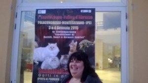 L'esposizione felina al Palacongressi di Montesilvano (PE)