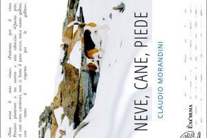 Neve, cane, piede di Claudio Morandini (14/2017)