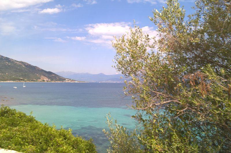 Ajaccio (Corsica)